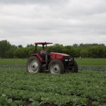 Meijer commits nearly $100 million to purchasing local produce
