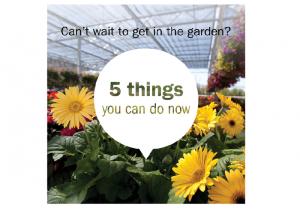 Meijer opened its Garden Centers