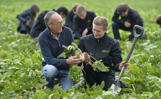 Sainsbury's starts national apprenticeship scheme for horticulture and agriculture this month