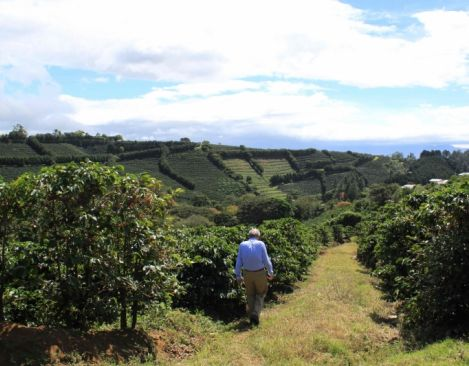 Starbucks Coffee Company to commit additional $30 million as part of its Global Farmer Fund program