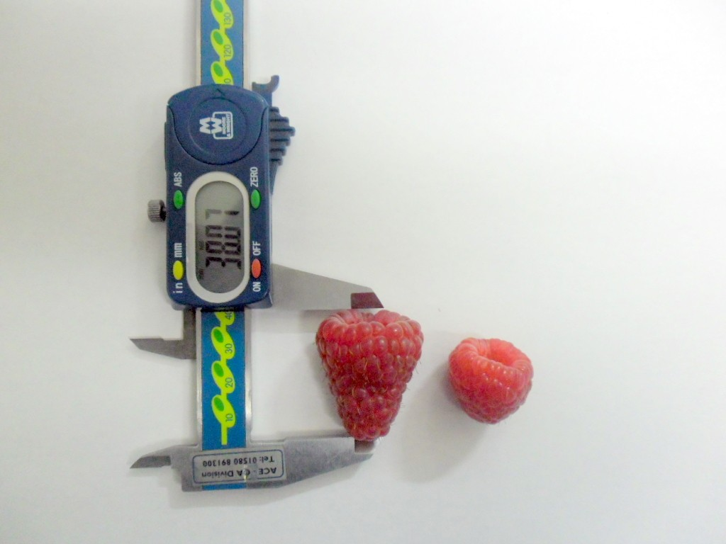 Tesco: new British-bred twice the size of regular raspberry helps boost UK demand for the summer fruit to record levels