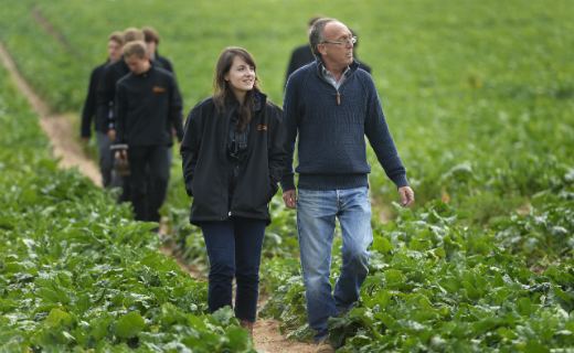 Sainsbury's opens applications for its horticultural and agricultural apprenticeship