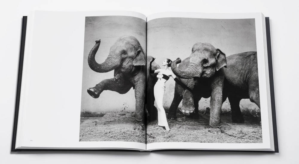 FASHION & LEATHER: Dior by Avedon book celebrates fashion photography