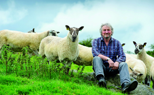 Sainsbury's extends its British lamb season until at least January 2016