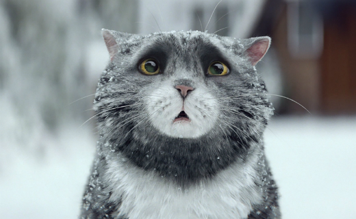 Sainsbury's unveils heartwarming new ad campaign featuring Judith Kerr's Mog