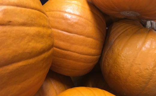 Sainsbury's pumpkin-tastic facts